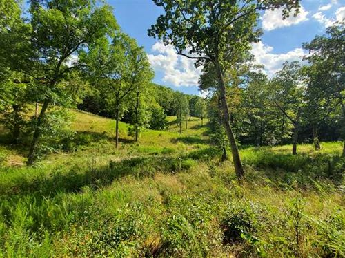 Home Building Site And/Or Hunting : Reeds Spring : Stone County : Missouri