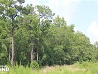 Jamestown Investment And Hunting LA : Jamestown : Berkeley County : South Carolina