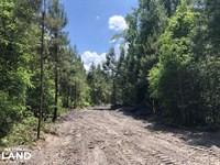 Whitehouse Road 5.5 Acres : Summerville : Berkeley County : South Carolina