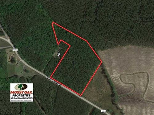 9.5 Acres of Hunting And Timber LA : Gates : North Carolina