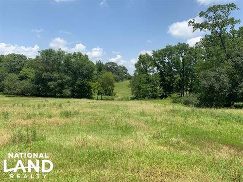 110 Acres 3 Ponds, Timber, Great Bu : Grand Saline : Van Zandt County : Texas
