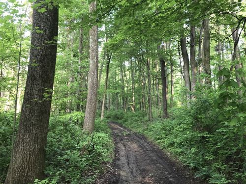 Stoney Hill Rd, 102 Acres : Heath : Licking County : Ohio