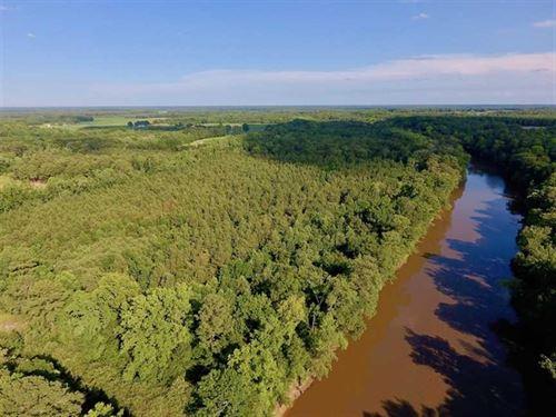 39.74 Acres of Tar River Hunting : Tarboro : Edgecombe County : North Carolina