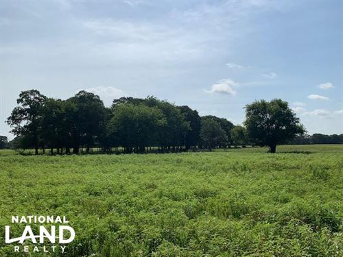 25 Acres in Emory, Great Cattle Tra : Emory : Rains County : Texas