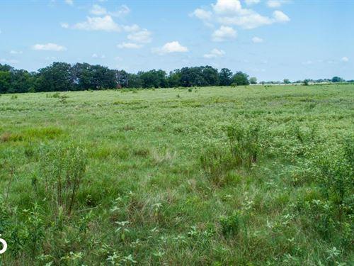 25 Acres Near Lake Fork, Pasture : Emory : Rains County : Texas
