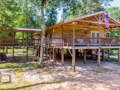 104 Acres With A Cabin In Jefferson : Mount Olive : Jefferson Davis County : Mississippi