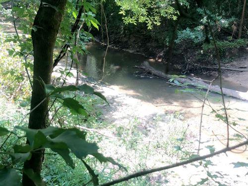 148 Acres, Bogue Chitto Creek : Marion Junction : Dallas County : Alabama