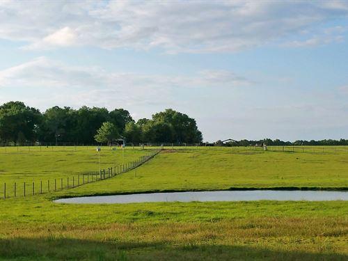 Heaven On Stage Ranch : Live Oak : Suwannee County : Florida