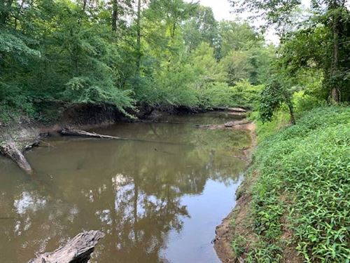 Deer And Hogs, Excellent Hunting : Carthage : Leake County : Mississippi