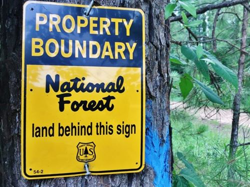 Land & Camp Site For Sale Borde : Crosby : Wilkinson County : Mississippi