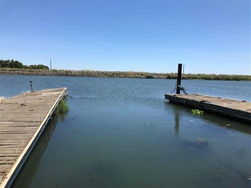 Northern California Bradford Island : Oakley : Contra Costa County : California