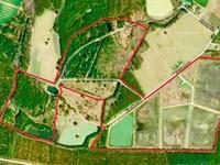 Duck Hunting Property Martin Co, Nc : Williamston : Martin County : North Carolina