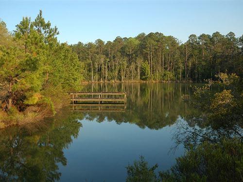 843 Acres Defuniak Springs, Florida : De Funiak Springs : Walton County : Florida