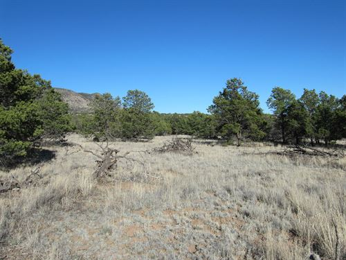Fantastic Views in Rural New Mexico : Datil : Catron County : New Mexico