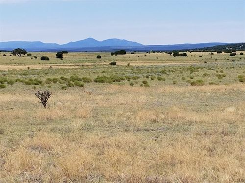 60 Ac Estancia Valley NM Ranchette : Moriarty : Torrance County : New Mexico