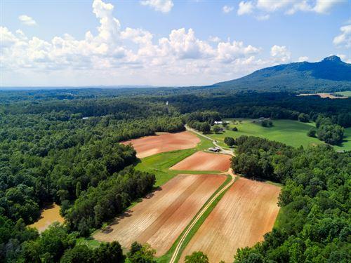 Farm For Sale in Pinnacle NC : Pinnacle : Surry County : North Carolina