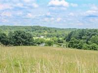 Lake Rd, 66 Acres : McArthur : Vinton County : Ohio