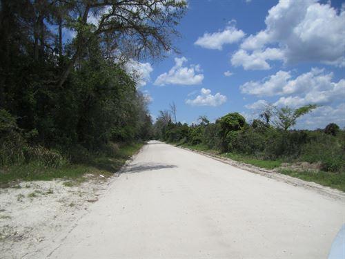 Georges Lake : Palatka : Clay County : Florida