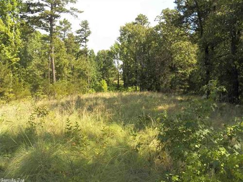 5 Acres Near Greers Ferry Lake : Greers Ferry : Cleburne County : Arkansas