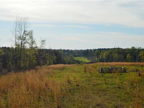 122 Acres Hunting Land For Sale : Bogue Chitto : Lincoln County : Mississippi