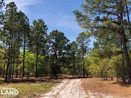 Opportunity Calls Roseboro Timber : Roseboro : Cumberland County : North Carolina