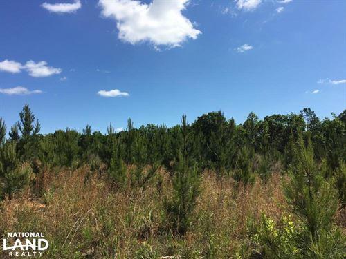 Country Homesite And Hunting Land : Union : South Carolina