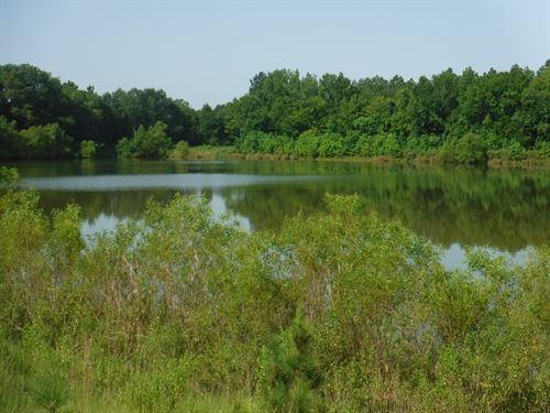 Homesite & Fishing Property : Canton : Madison County : Mississippi