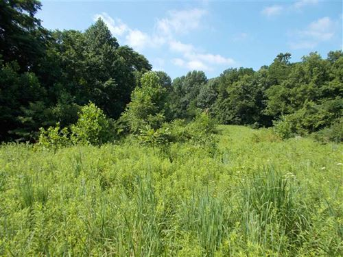 Land For Sale Vermillion County : Cayuga : Vermillion County : Indiana