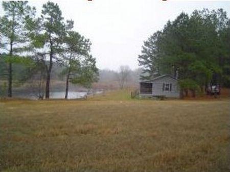 178+/- Acres Cabin,lake,pasture : Newington : Screven County : Georgia