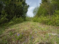 Springfield, Maine Acreage For Sale : Springfield : Penobscot County : Maine