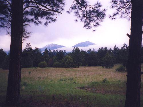 Bear Claw Pass Ranch : Gulnare : Las Animas County : Colorado