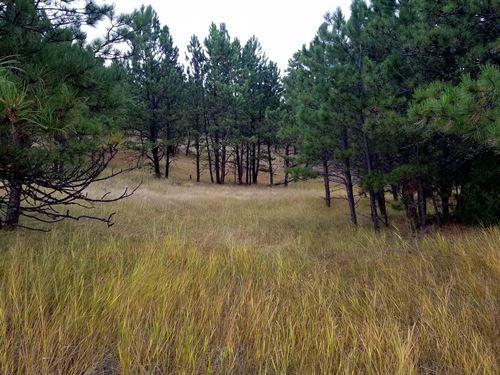 Lone Elk Ranchette : Hot Springs : Custer County County : South Dakota
