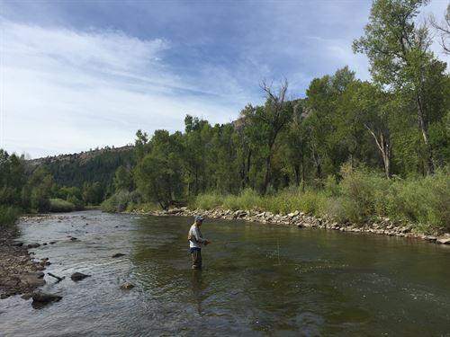 Piedra River Ranch : Bayfield : Archuleta County County : Colorado