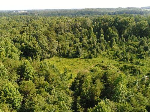 Rural Rainbow Lake Road 12 Acres : Campobello : Spartanburg County : South Carolina