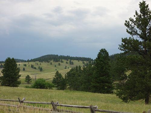 Cobb Ridge Ranch : Hermosa : Custer County County : South Dakota