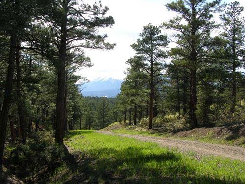 Spanish Peaks Hideout : Gulnare : Las Animas County : Colorado