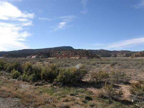 Desutter Ranch : Monticello : San Juan County : Utah