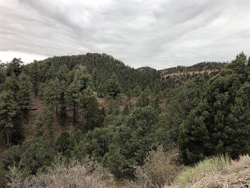 Highlands of Turkey Canyon : Colorado Springs : El Paso County : Colorado
