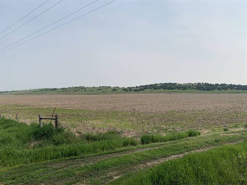 Lucky Loup Ranch : North Loup : Greeley County County : Nebraska