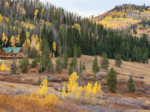 Hummingbird Ranch : Clark : Routt County County : Colorado