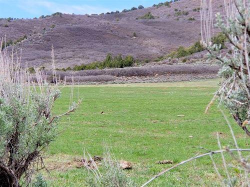 Rock Ridge Ranch : Meeker : Rio Blanco County : Colorado