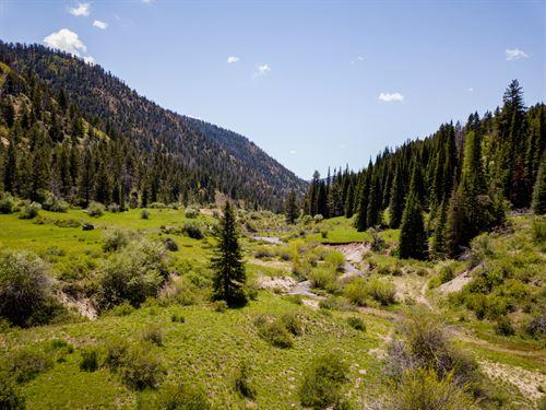 Mountain Valley Ranch : De Beque : Garfield County : Colorado
