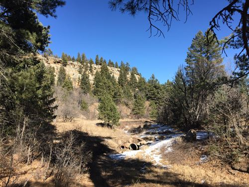 Deer Trail at Hidden Creek : Rye : Pueblo County : Colorado