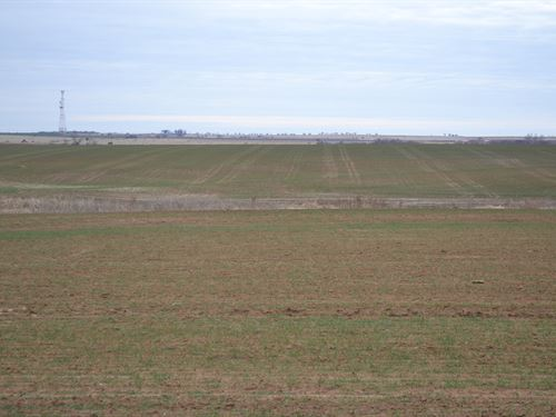 Sumner Farmland 160 : South Haven : Sumner County : Kansas