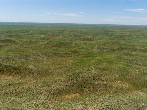 Kooper Grass Ranch : Alliance : Box Butte County : Nebraska