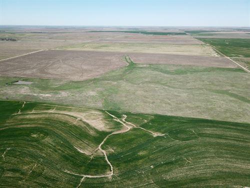 Pawnee County Ag & Rec Combo : Larned : Pawnee County : Kansas