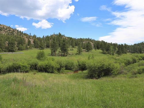 Bull Creek Retreat : Red Feather Lakes : Larimer County : Colorado