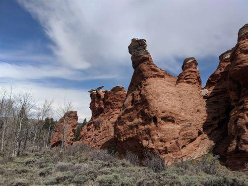 Mushroom Rock Mesa : Red Feather Lakes : Larimer County : Colorado