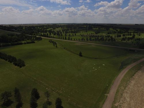 Sugar Hills Views : Goodland : Sherman County : Kansas