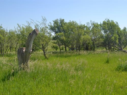 Runway View Farmland 150 : Herington : Morris County : Kansas